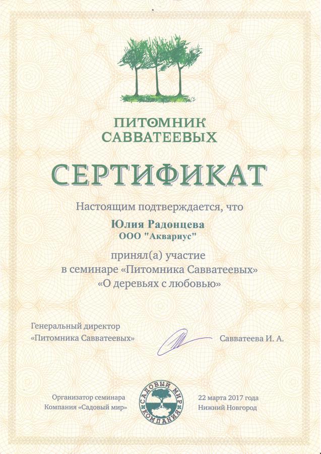 Сертификат Савватьеевых 2017
